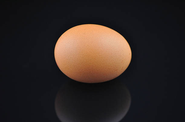 Egg isolated on black stock photo