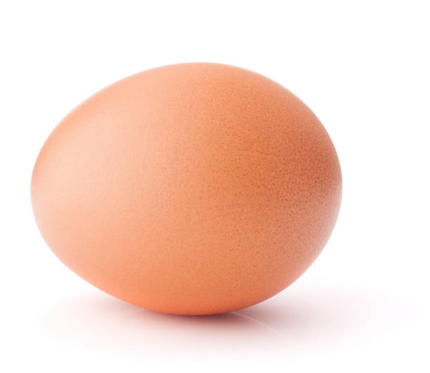 Egg isolated on white background cutout Egg isolated on white background cutout egg white stock pictures, royalty-free photos & images
