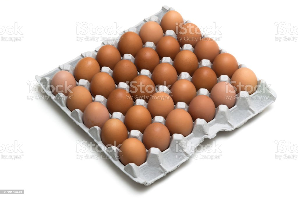 egg isolated on white background stock photo