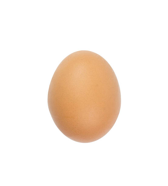 Egg isolated on white background, With clipping path Egg isolated on white background, With clipping path egg white stock pictures, royalty-free photos & images