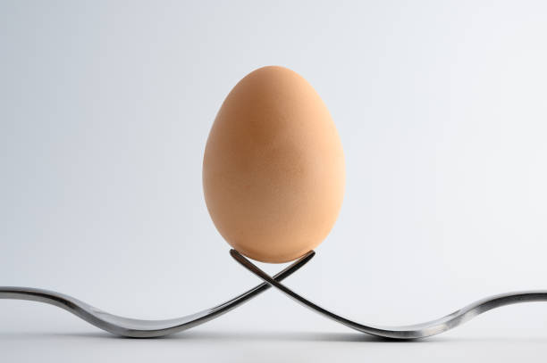Egg on forks stock photo