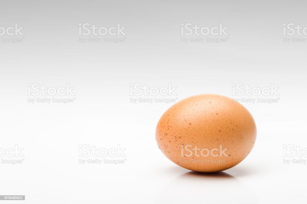 Egg on white background. royalty-free stock photo