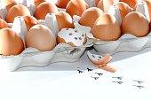 Egg outbreak