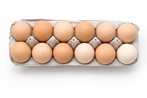 Egg Series - Dozen stock photo