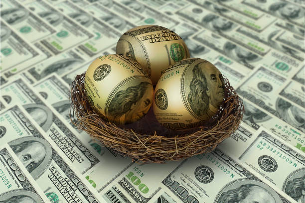egg shaped money in nest on dollar background egg shaped money in nest on dollar background nest egg stock pictures, royalty-free photos & images