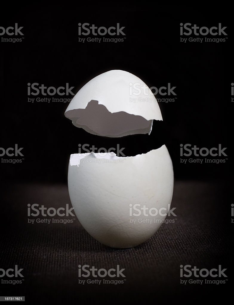 Egg Shell royalty-free stock photo