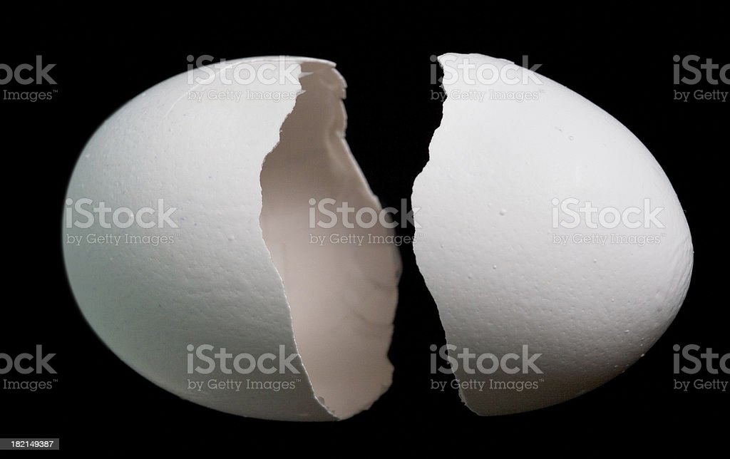 Egg shell, two parts royalty-free stock photo