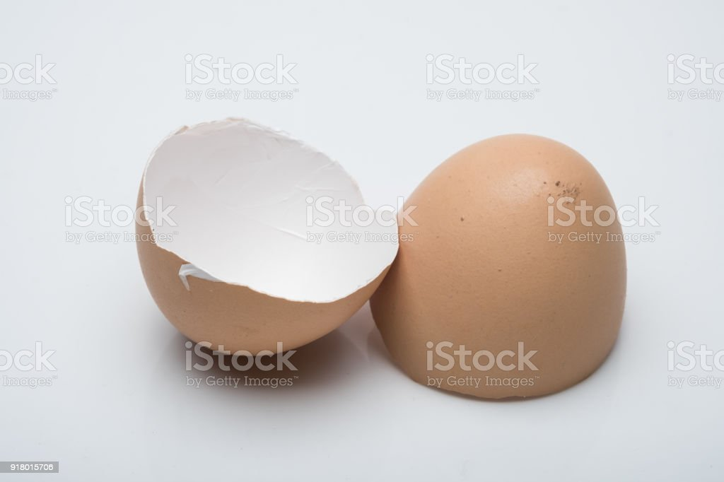 Egg shell with white scene stock photo