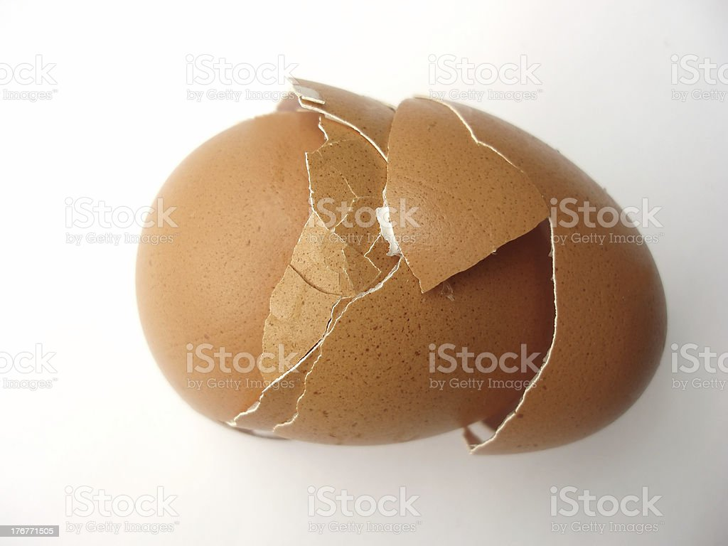 Egg shells royalty-free stock photo
