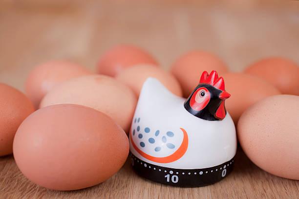 Egg Timer stock photo