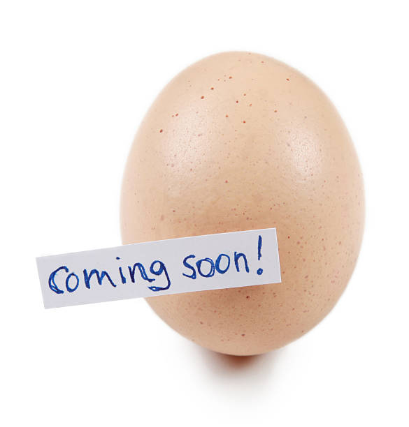 """Egg with label """"coming soon!"""" stock photo"""