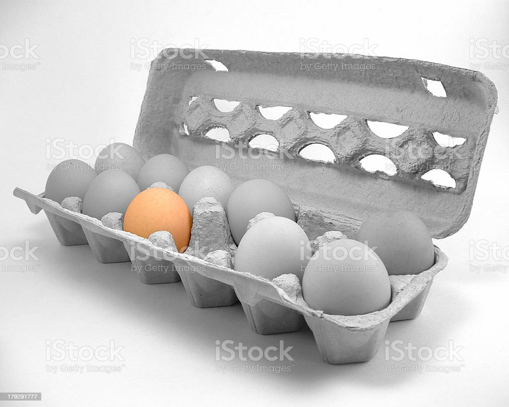 Eggbox and Eggs royalty-free stock photo