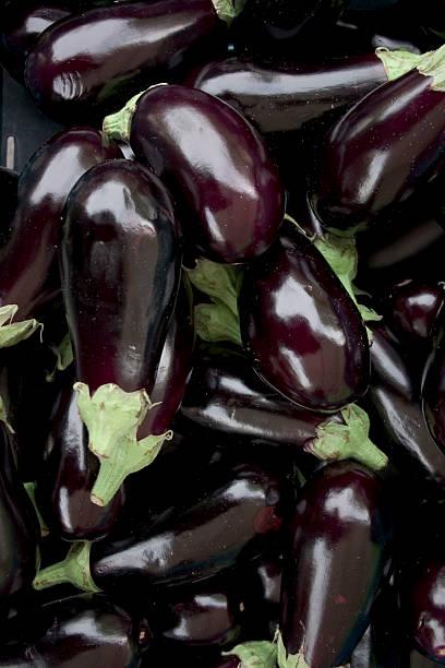 eggplant 2 - double_p stockfoto's en -beelden
