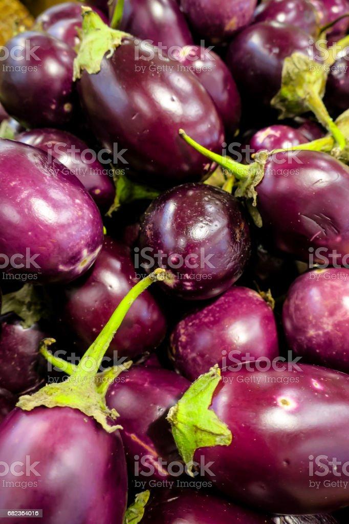 eggplant zbiór zdjęć royalty-free