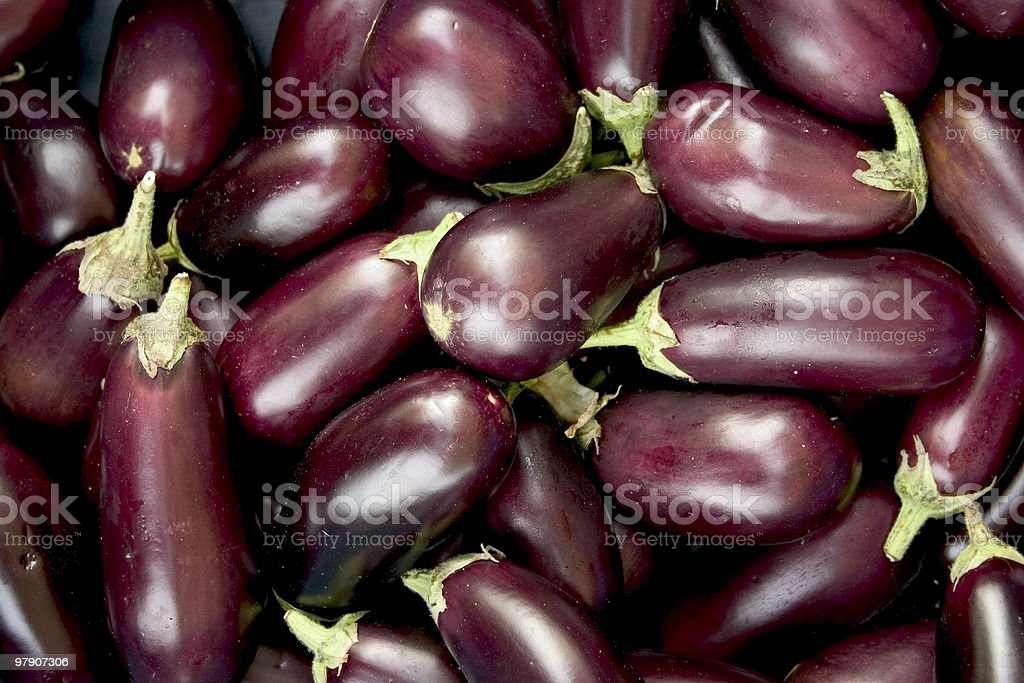 eggplant royalty-free stock photo