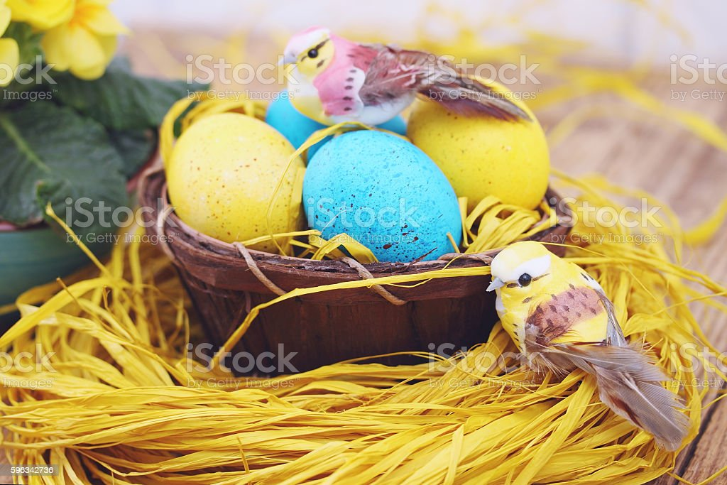 eggs and birds, tinted royalty-free stock photo