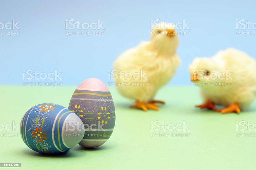 Eggs and Chicks royalty-free stock photo