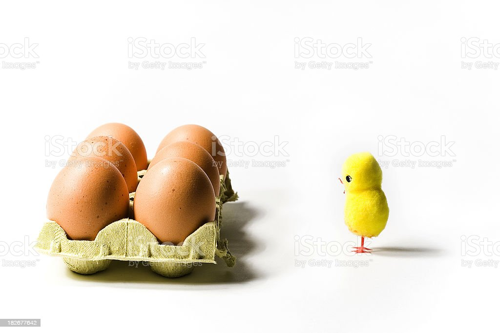 Eggs and easter chick royalty-free stock photo