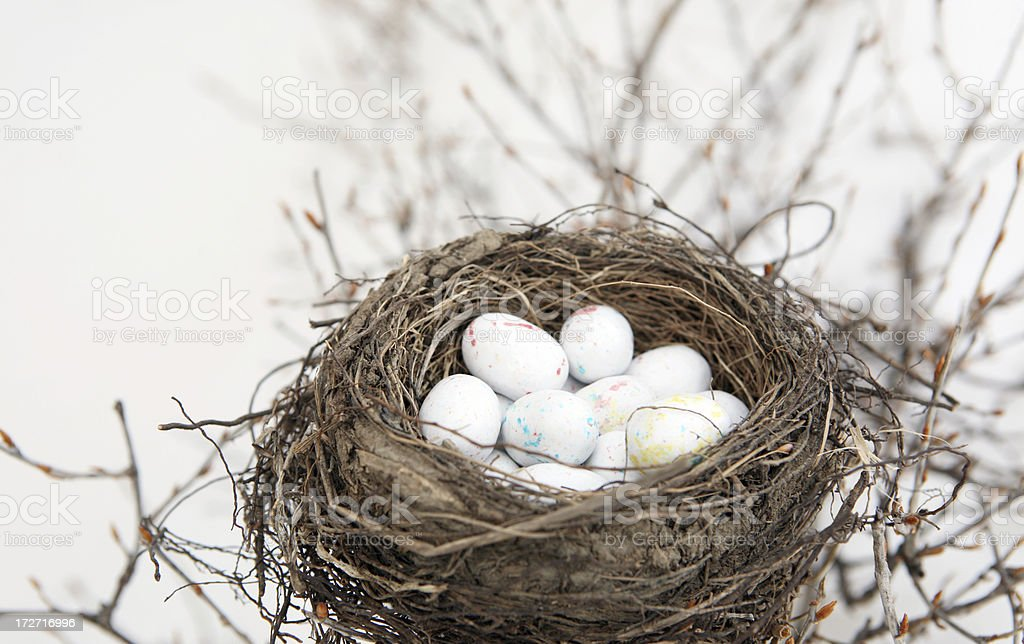 Eggs and nest royalty-free stock photo