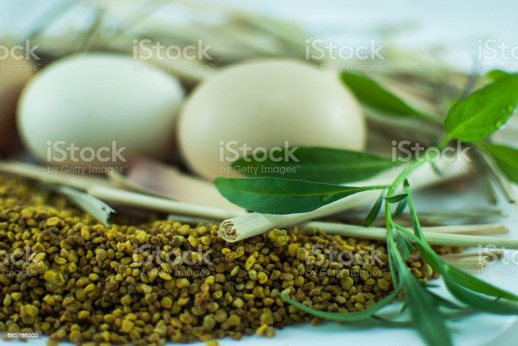 Huevos, cultivos y hierbas sobre un fondo blanco aislado foto de stock libre de derechos