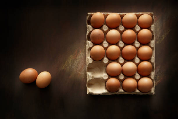 Eggs: Eggs in Carton Still Life stock photo