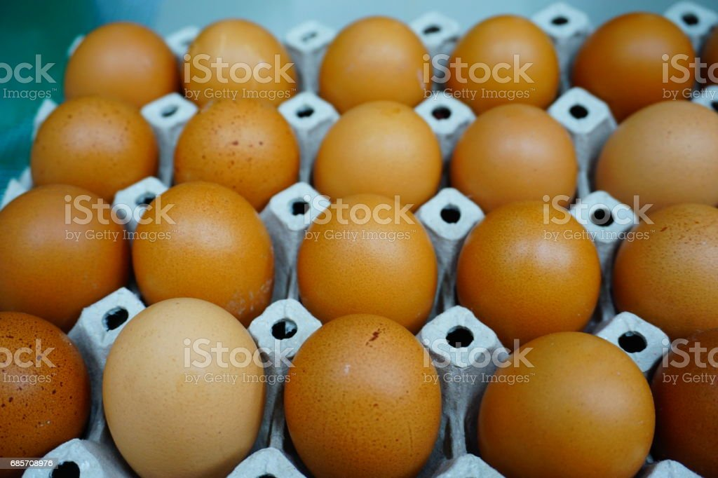 Eier von chicken farm in-package Lizenzfreies stock-foto