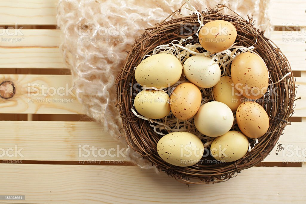 Eggs in a Nest, 'Nest Egg' stock photo
