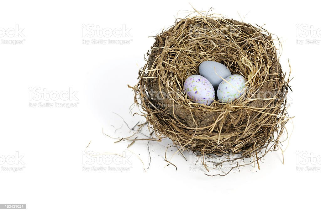 Eggs In a Nest stock photo