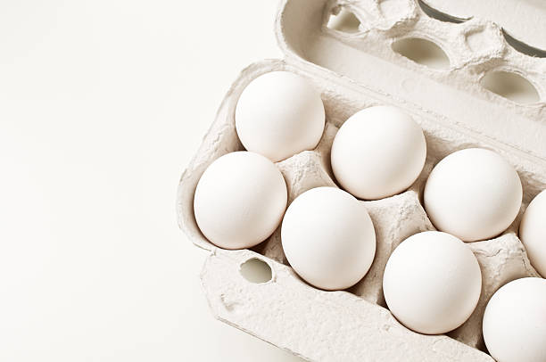 Eggs in carton White eggs in carton on white background. animal egg stock pictures, royalty-free photos & images