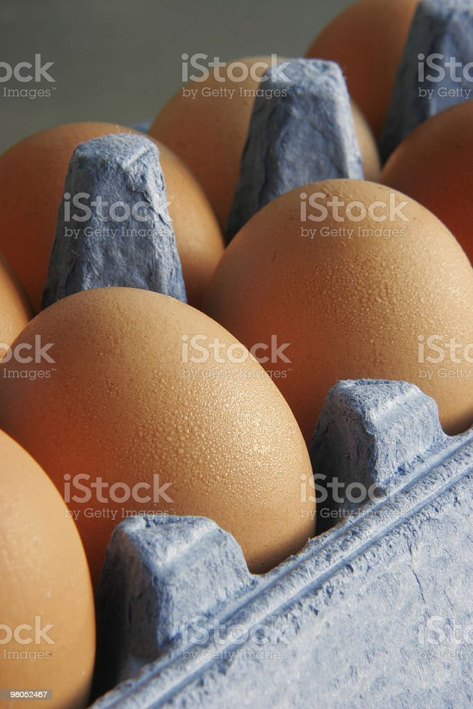 Eggs in carton royalty-free stock photo