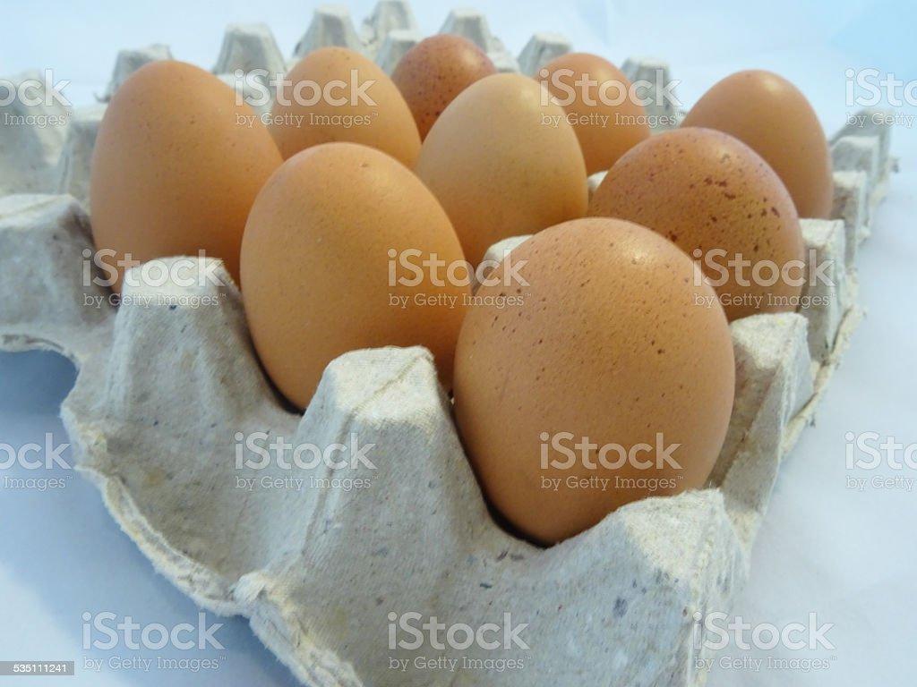 Eier in egg carton – Foto