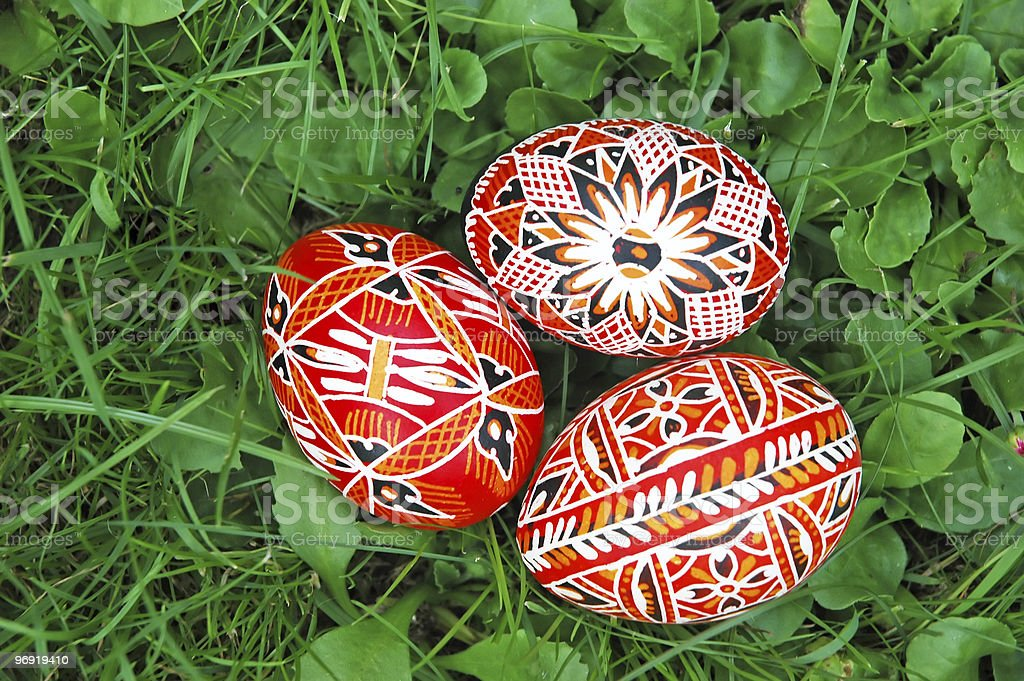 Eggs in grass royalty-free stock photo
