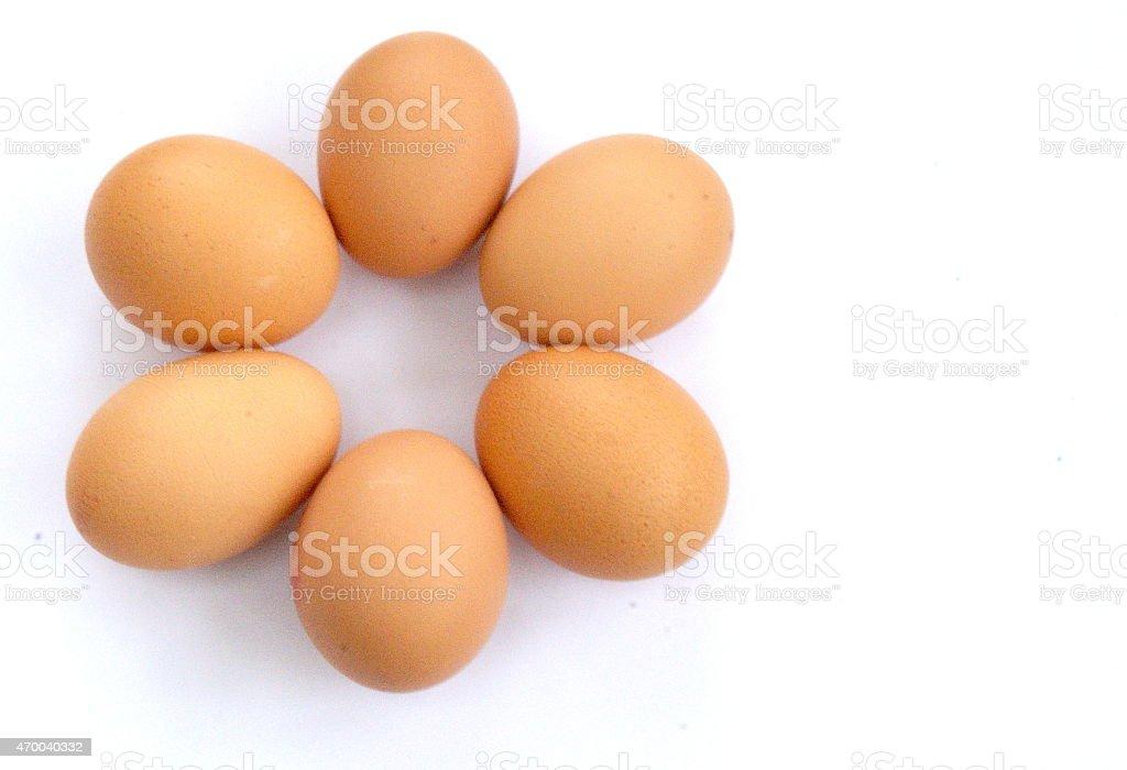 Eggs in petal shape stock photo