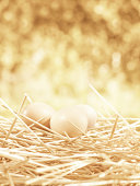 Eggs in the straw nest. Farm theme