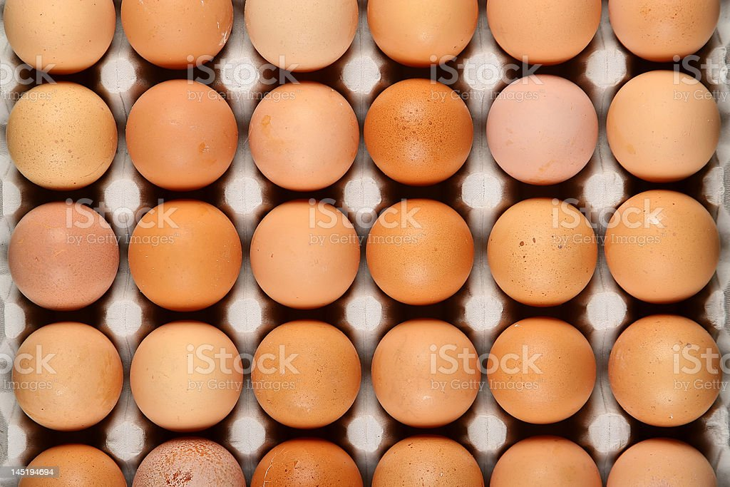 eggs in tray royalty-free stock photo