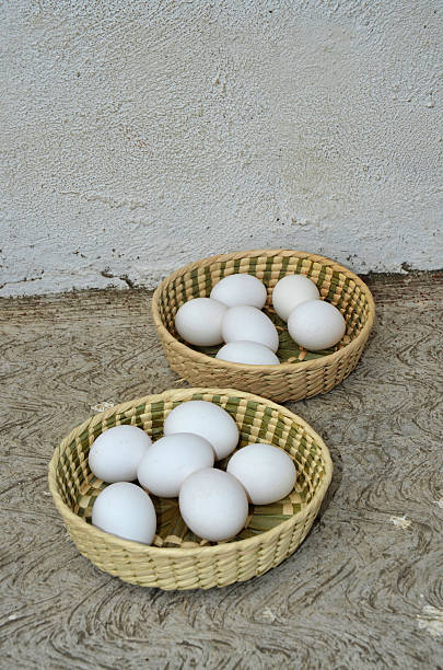 Eggs in Two Baskets stock photo