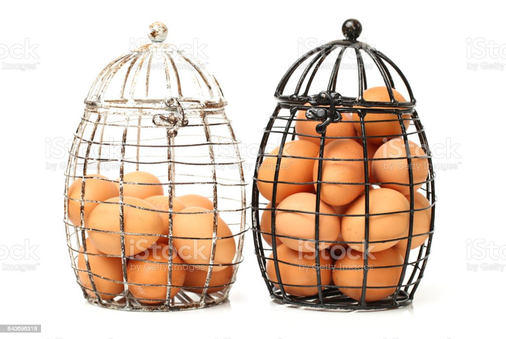 Eggs in wire basket on the white background stock photo