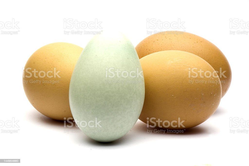 Eggs isolated on white royalty-free stock photo