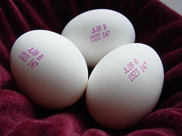 Eggs of the Future stock photo