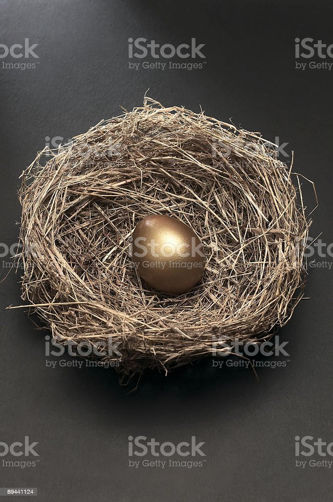eggs on nest royalty-free stock photo