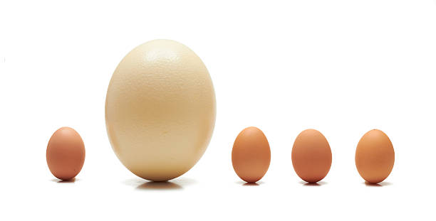 Huevos  - foto de stock
