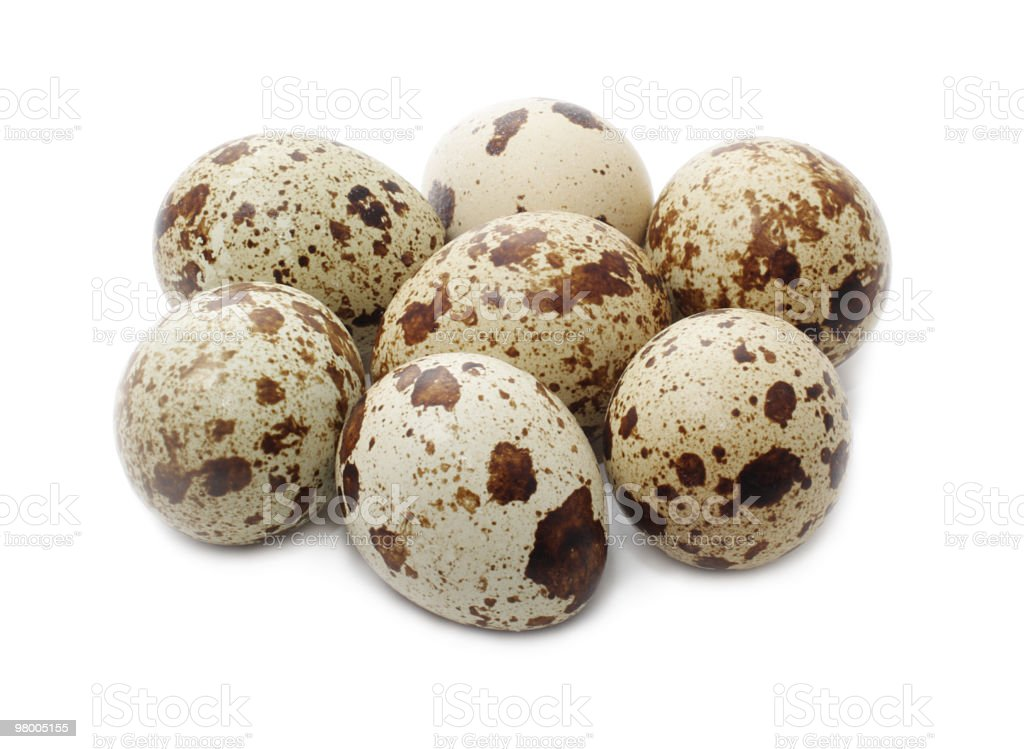 Eggs quail royalty-free stock photo