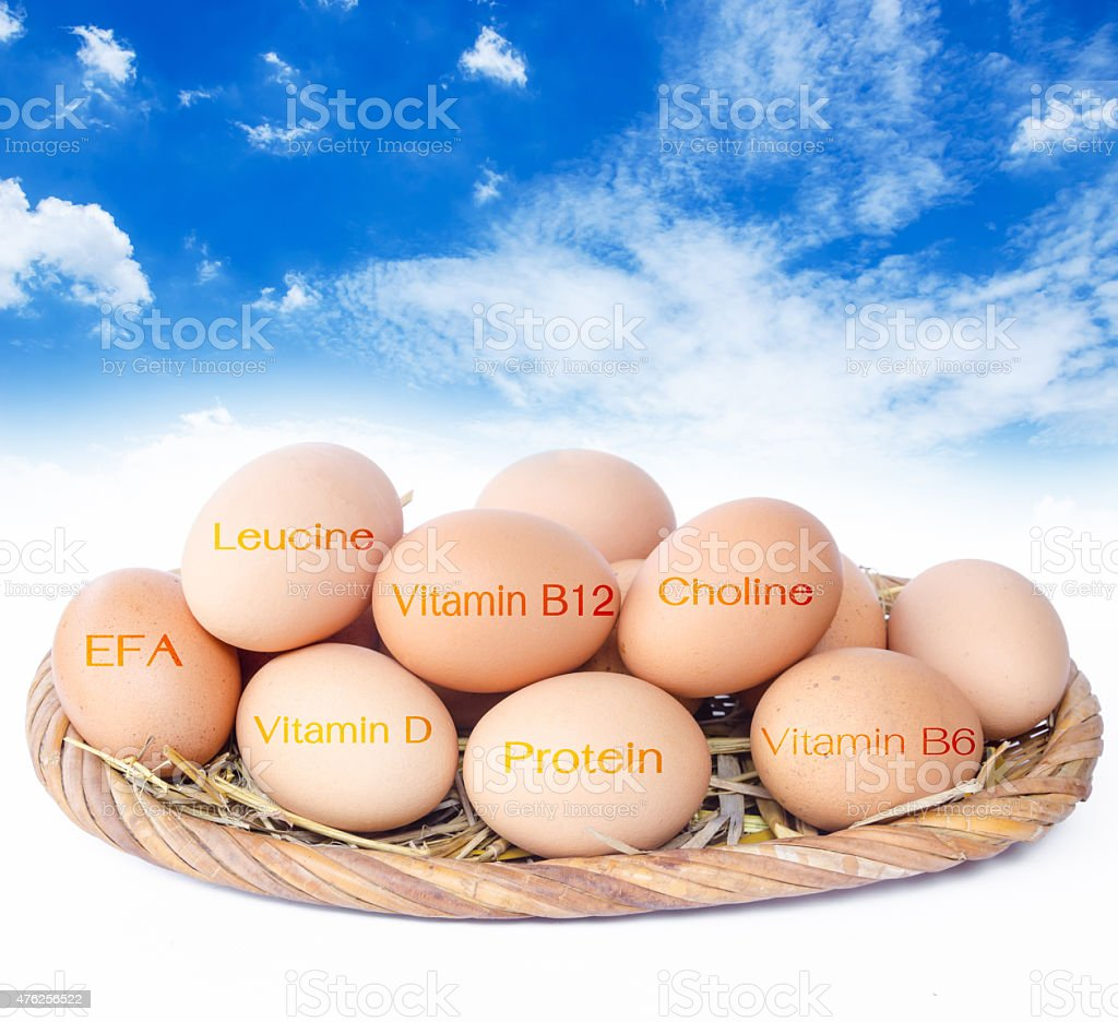 Eggs The nutrients in eggs for weight control. stock photo