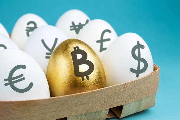 Eggs with currency signs in wooden packing on a blue background. Golden egg with a bitcoin sign. Investment concept stock photo