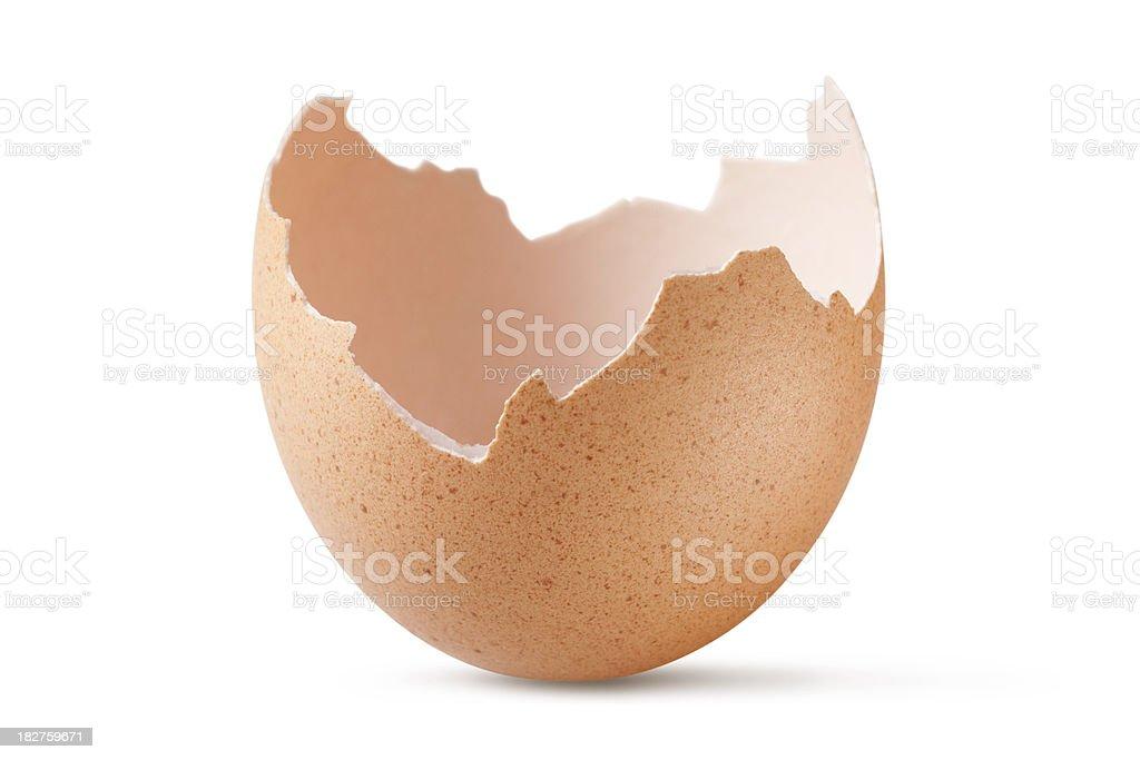 Eggshell stock photo