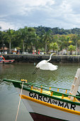 Paraty, Brazil,September, 26, 2014: Heron takes off the bow of a boat called \
