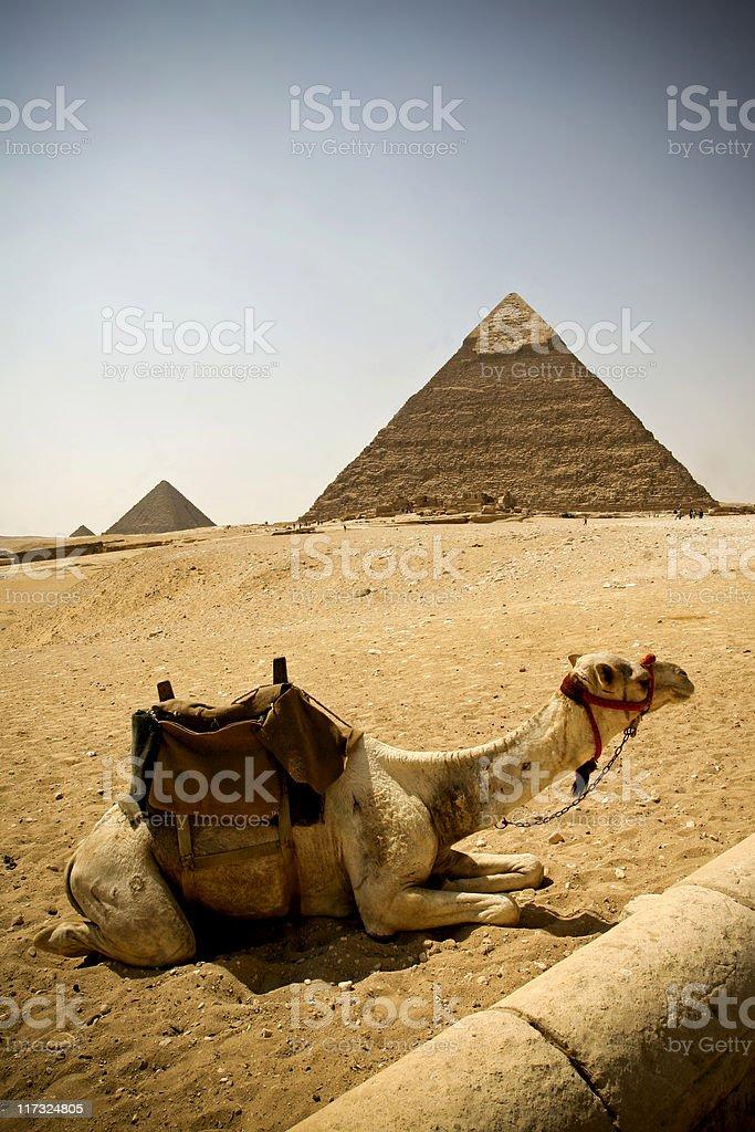 Egypt Wonders royalty-free stock photo