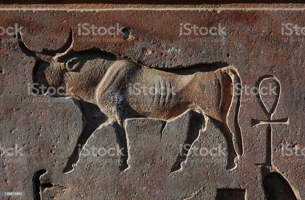 Egyptian Bull royalty-free stock photo
