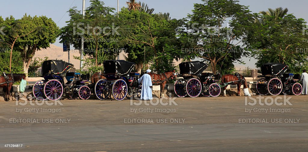 Egyptian Caleche Carriages stock photo