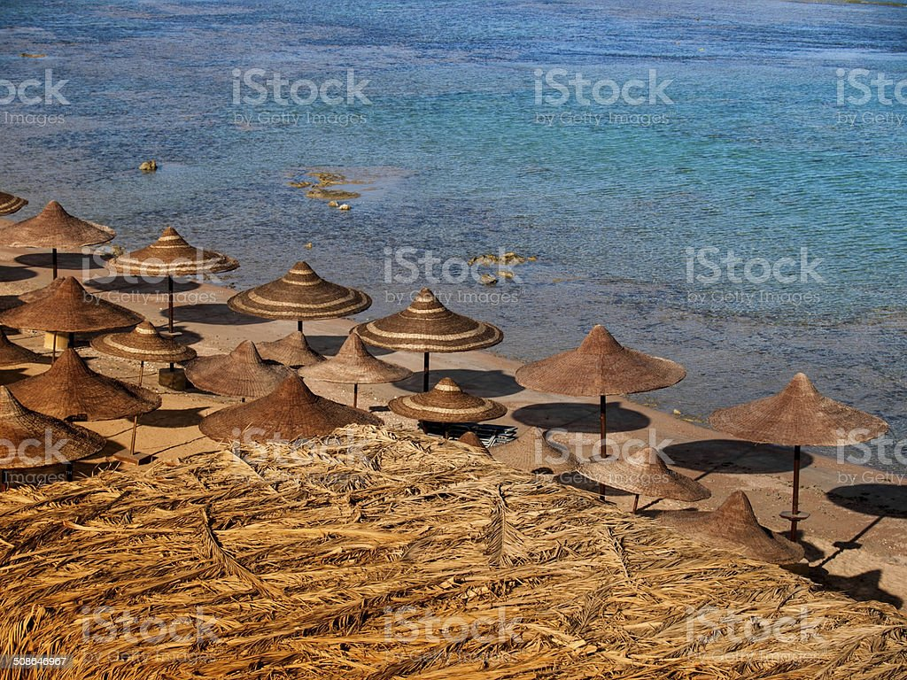 Egyptian coast stock photo